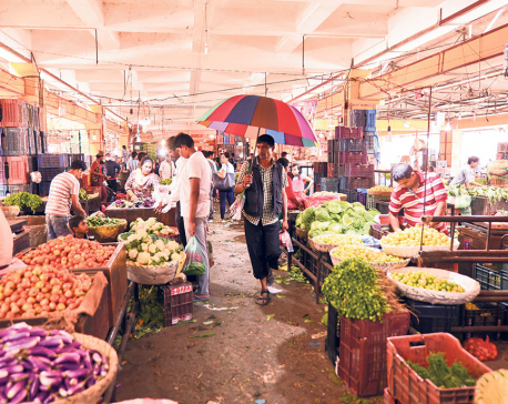 5% TDS on vegetable, fruit traders to promote tax compliance: Revenue secy