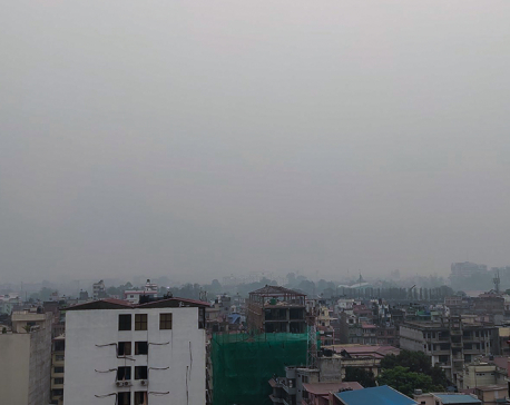 Air pollution: experts suggest staying indoors