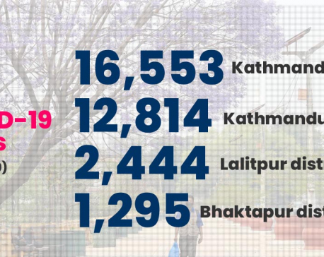 INFOGRAPHICS: 16,553 cases detected in Valley in past 19 days