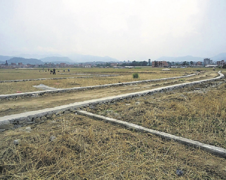 Restriction on land plotting hits property deals