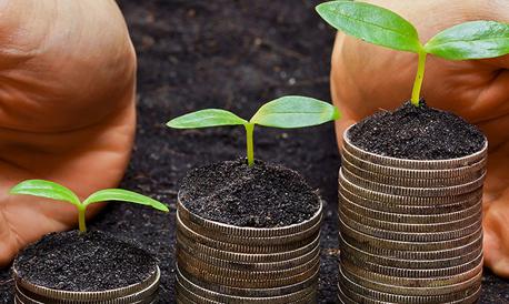 Knocking sense into CSR
