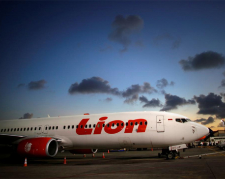 Indonesia to publish final report on Lion Air crash in November