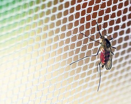 Malaria lessons