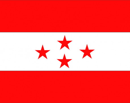 Nepali Congress urges govt to correct mistakes