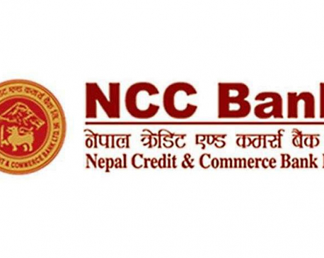 CIB raids NCCB, arrests staffers for alleged fraud scam