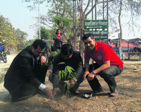 NIC Asia organizes tree plantation in Dharan