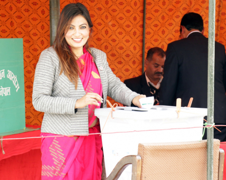 In Pictures: presidential election