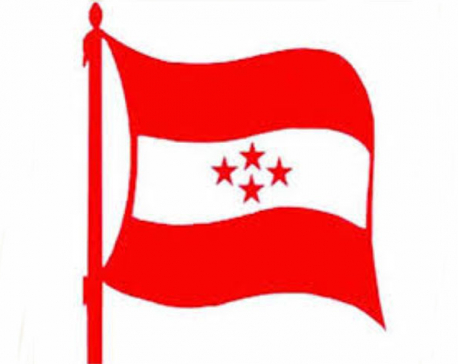 21 govt failures in 21 months: Nepali Congress