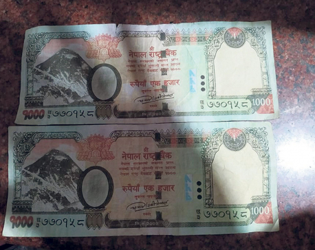 Fake Nepali currencies of 1000 and 500 denominations found in Waling