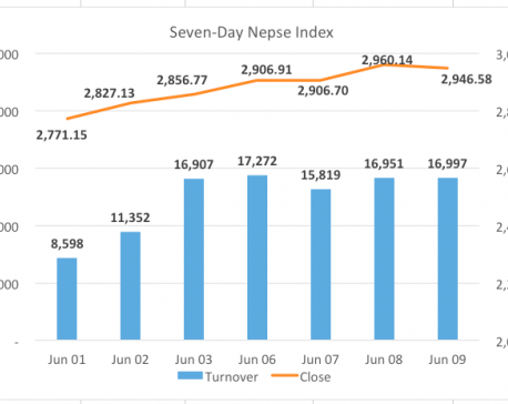 Nepse slips as development bank sector fails to sustain its gain
