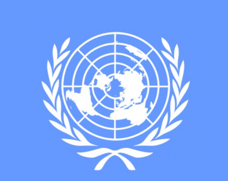 United Nations Security Council Reform