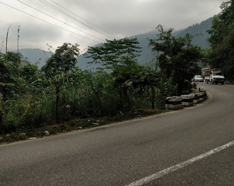 Permission granted to cut around 7,000 trees to widen Mugling-Pokhara road