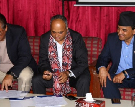 NRNA to help govt in promotion of Visit Nepal 2020