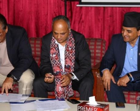 NRNA to help govtin promotion of Visit Nepal 2020