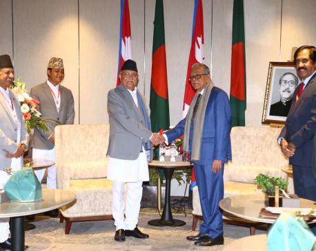 Vice President, PM, leaders call on visiting Bangladesh President (with photos)