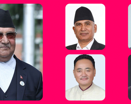 Cabinet members assigned additional portfolios two days after Supreme Court dismissed 20 ministers