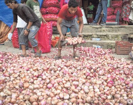 Veg supply to Kathmandu improving gradually