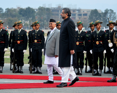 Guard of Honor offered to Pakistani PM Abbasi (photo feature)