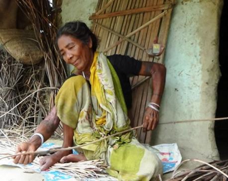 We are Nepali at heart despite changed identity: Indians of Nepali origin