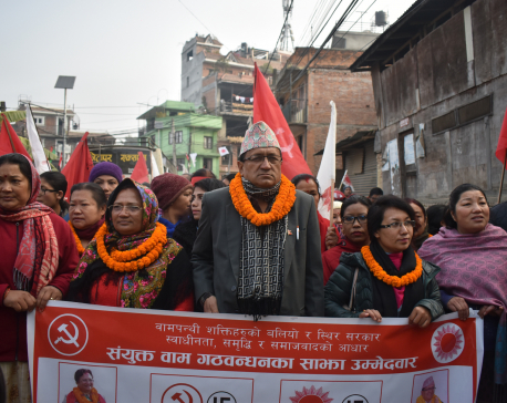Communists are more democratic than others: leader Bhusal
