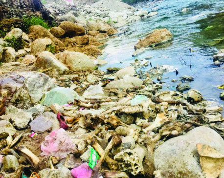 Beni Bazar slaughterhouses polluting environment
