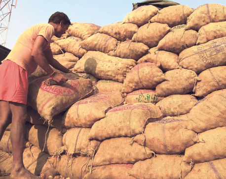 Birgunj traders facing huge loss on potatoes