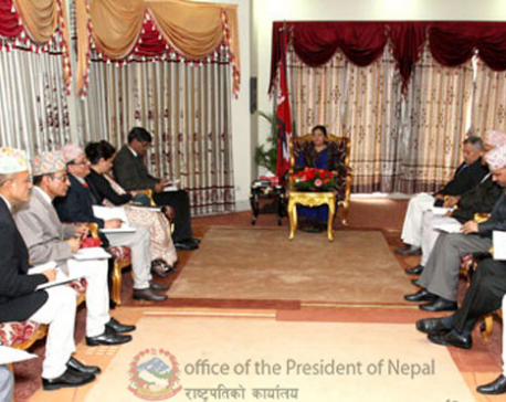 EC apprises President on election preparations