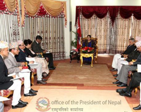 EC apprises President on election preparations