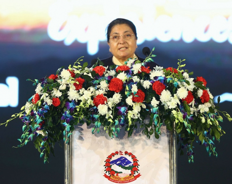 Let us play our role honestly to materialize martyrs' dream: President Bhandari