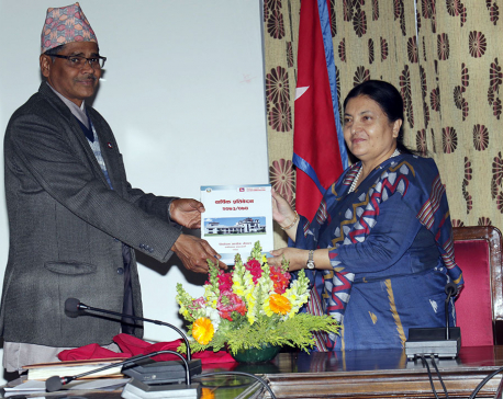 EC submits annual report to President