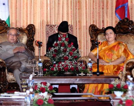 President Bhandari and Indian President Mukherjee hold talks
