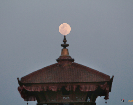 Moon Glorifying (Photo feature)