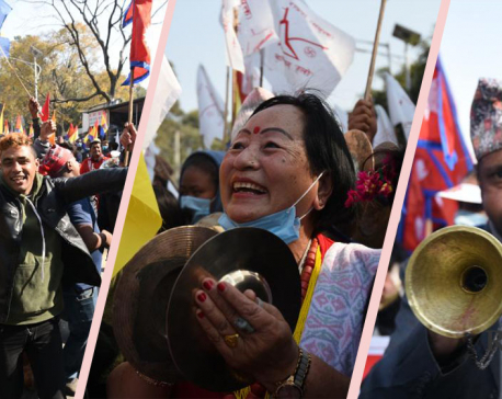 RPP stages demonstration in Kathmandu demanding restoration of constitutional monarchy, Hindu state (with photos)