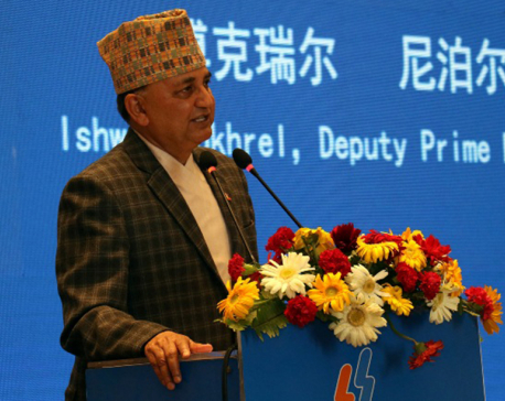 Nepal wants to learn from China: DPM Pokharel