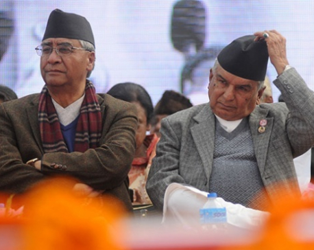 Poudel faction urges Deuba to follow party system