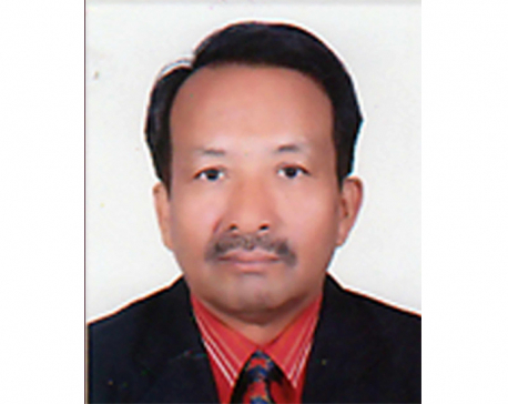 NBA picks Shrestha as Judicial Council member