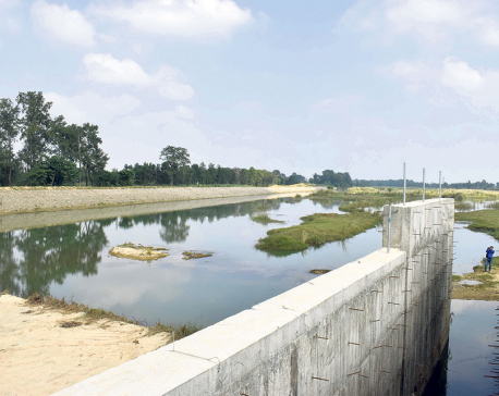 Construction of Rohini Irrigation Project sluggish