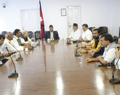 Ruling parties agree to postpone local polls in Province 2