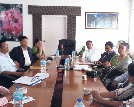 Nepal to host SAARC Artists Camp, Exhibition of Paintings