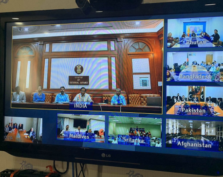 Health professionals of SAARC member states hold video conference to contain coronavirus
