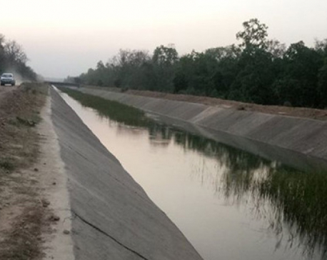Sikta Irrigation Project starts releasing water through its western and eastern canals to irrigate paddy fields