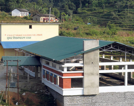 Sindhuli fruit processing plant in limbo