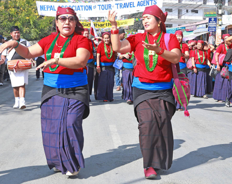 Pokhara Street Festival begins (photo feature)