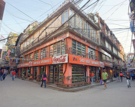 Vehicle-free Thamel