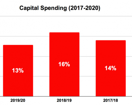 Strong government but weak capital expenditure