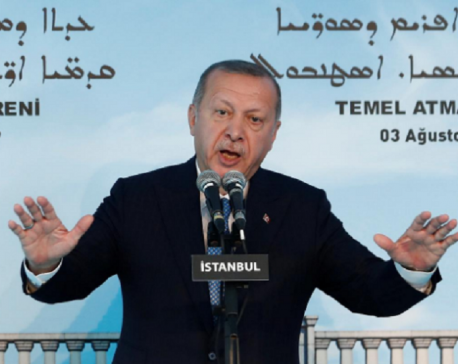 Turkey will carry operation in northern Syria - Erdogan