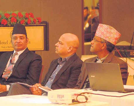 Two-thirds of FDI in reserve or loans, shows NRB study