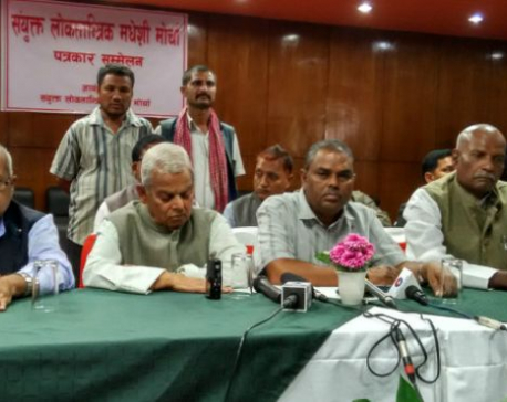 UDMF for holding elections of House of Representatives at first