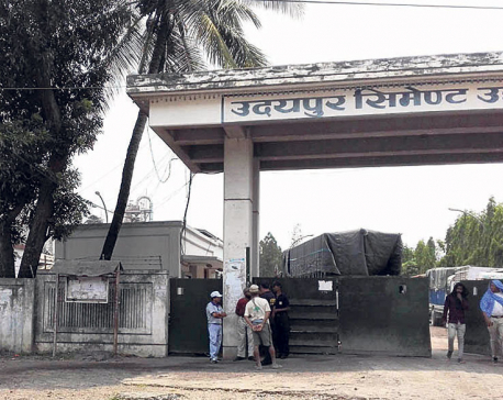 After price reduction, Udayapur Cement sees sales double
