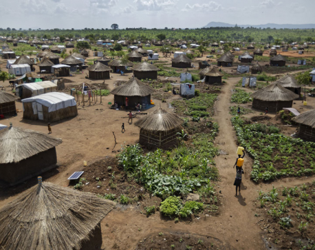 Number of global displaced up to 65.6 million last year: UN